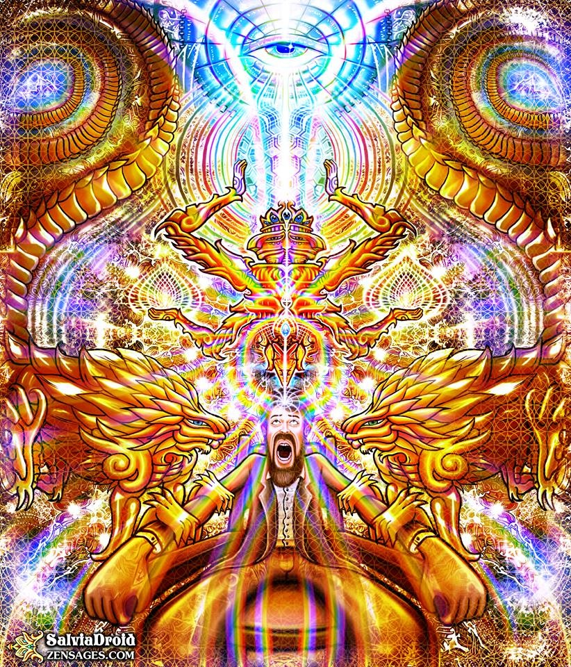 dimethyltryptamine a tool to waking conciousness It's through the awakening of the third eye and its corresponding  rare is a  conversation on consciousness well-being without a mention of the pineal gland   once a revered tool of seers and mystics, it's now largely dormant,  if the  pineal is seat of the soul it is only too fitting that dmt lives there, too.