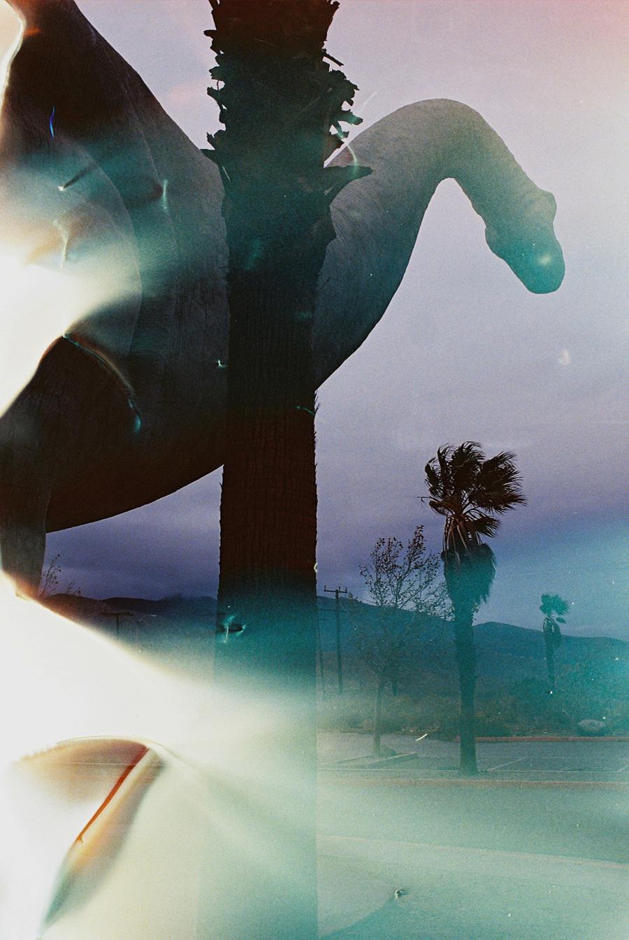 rex christian